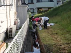 報奨金制度活用-12班清掃作業状況